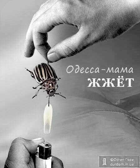 odessa-mama